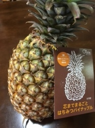台湾パイナップル2.JPG