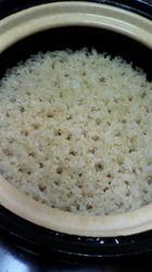 大月さんの玄米.jpg