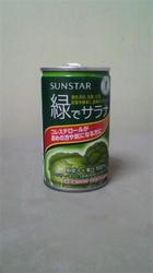 緑でサラナ.jpg