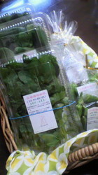 GAIAの野菜.jpg