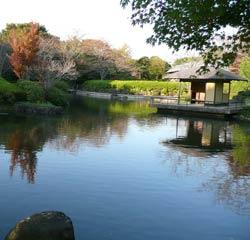 P1000685[1]-web-makigaharae.jpg