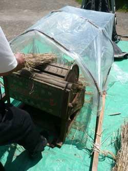 昭和初期頃の脱穀機を使用しました。柏のオーガニック女性専用岩盤浴StoneSpa GAIAです。