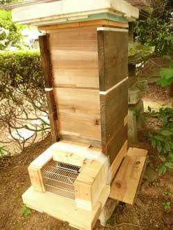 親Bの子供のミツバチの巣です。 by Stone Spa GAIA