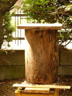 非難してきた、親Bの丸太の巣箱の今朝の画像です。 by Stone Spa GAIA