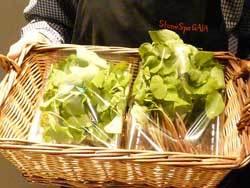 無農薬栽培の玄ソバの実を自然栽培で育てた、スプラウトはいかがですか